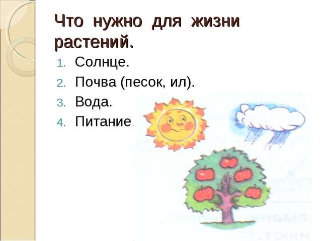 Что нужно для жизни растений. Солнце. Почва (песок, ил). Вода. Питание.