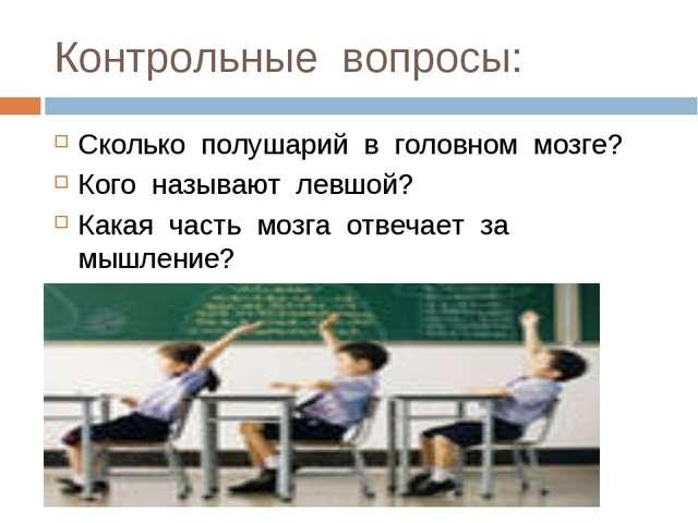 Контрольные вопросы: Сколько полушарий в головном мозге? Кого называют левшой...