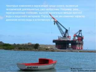 Некоторые изменения в окружающей среде океана, вызванные человеческой деятель
