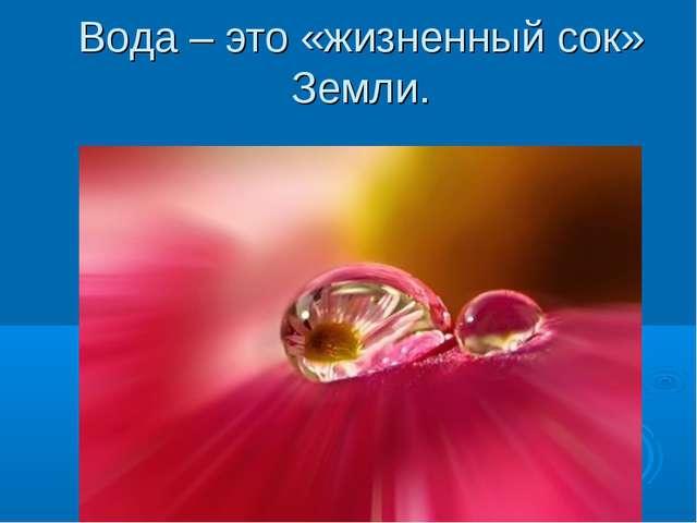 Вода – это «жизненный сок» Земли.