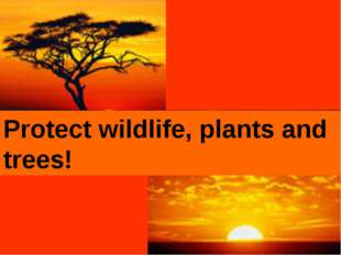 Protect wildlife, plants and trees!