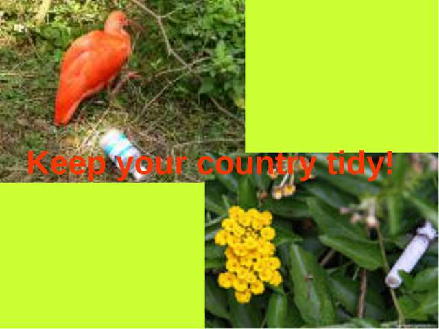 Keep your country tidy!