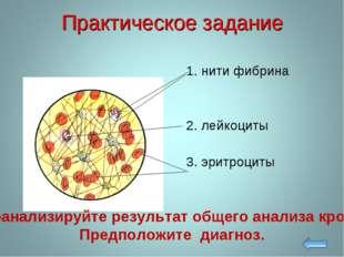 Практическое задание 1. нити фибрина 2. лейкоциты 3. эритроциты Проанализируй
