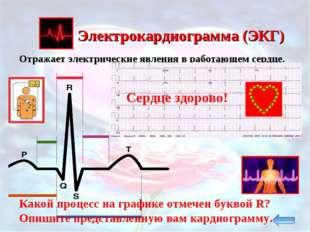 Электрокардиограмма (ЭКГ) Отражает электрические явления в работающем сердце.