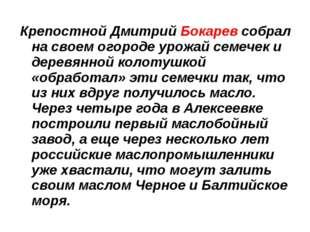 Крепостной Дмитрий Бокарев собрал на своем огороде урожай семечек и деревянно