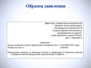 Образец заявления Директору станции юных натуралистов Иванову Петру Николаеви