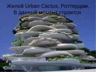 Жилой Urban Cactus, Роттердам. В данный момент строится