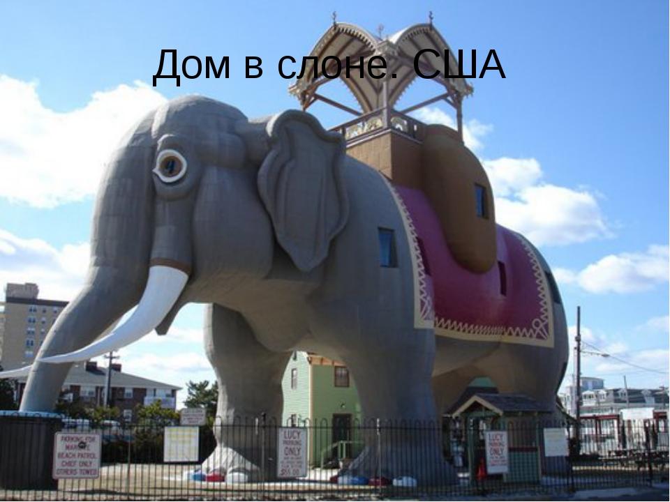 Дом в слоне. США