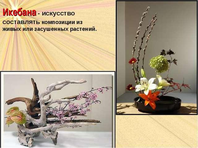 Икебана - искусство составлять композиции из живых или засушенных растений.