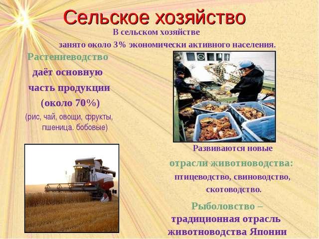 Сельское хозяйство Растениеводство даёт основную часть продукции (около 70%)...