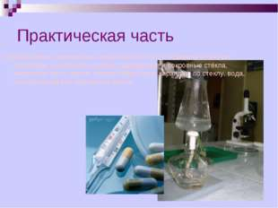 Практическая часть Оборудование и материалы: чашки Петри, колбы объёмом от 10