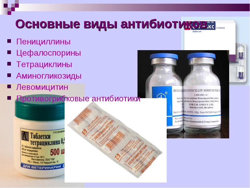 Пенициллины Цефалоспорины Тетрациклины Аминогликозиды Левомицитин Противогриб...