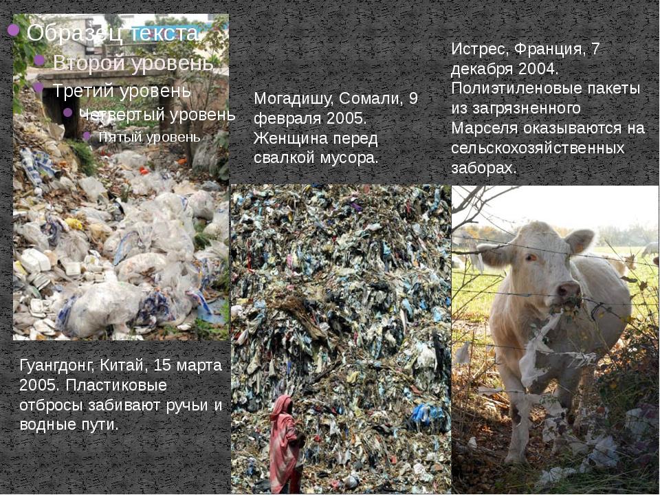 Гуангдонг, Китай, 15 марта 2005. Пластиковые отбросы забивают ручьи и водные...