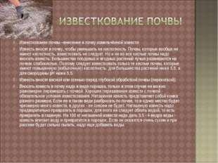 Известкование почвы –внесение в почву измельчённой извести Известь вносят в п