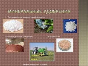 Азотные удобрения: аммиачная и калийная селитра Фосфорные удобрения: суперфос