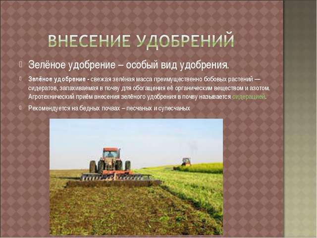 Зелёное удобрение – особый вид удобрения. Зелёное удобрение - свежая зелёная...