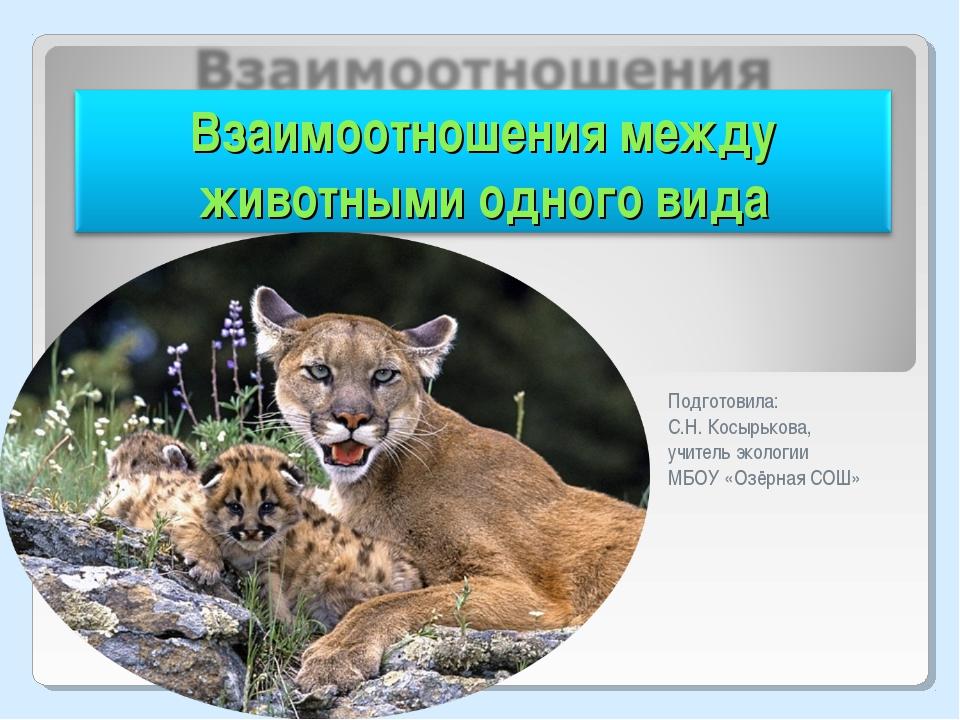 Подготовила: С.Н. Косырькова, учитель экологии МБОУ «Озёрная СОШ»
