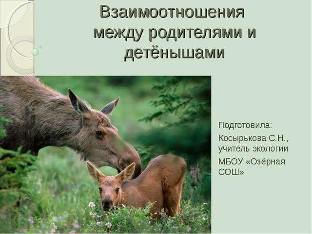 Взаимоотношения между родителями и детёнышами Подготовила: Косырькова С.Н., у...
