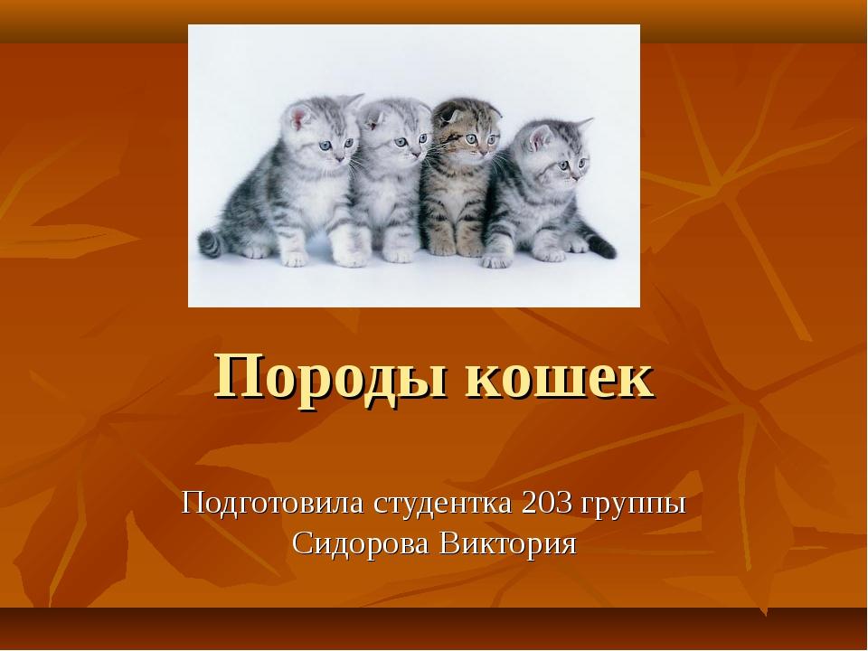Породы кошек Подготовила студентка 203 группы Сидорова Виктория