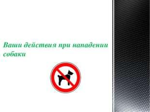 Ваши действия при нападении собаки