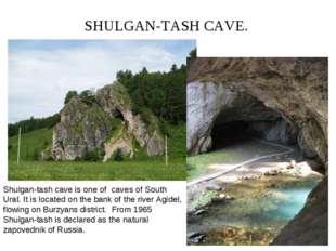 SHULGAN-TASH CAVE. Shulgan-tash cave is one of caves of South Ural. It is loc