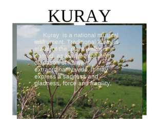 KURAY Kuray is a national musical instrument. Traditional kuray is made of th