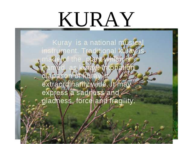 KURAY Kuray is a national musical instrument. Traditional kuray is made of th...