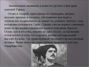 Значительное внимание в повести уделено и фигурам сыновей Тараса. Остап и Ан