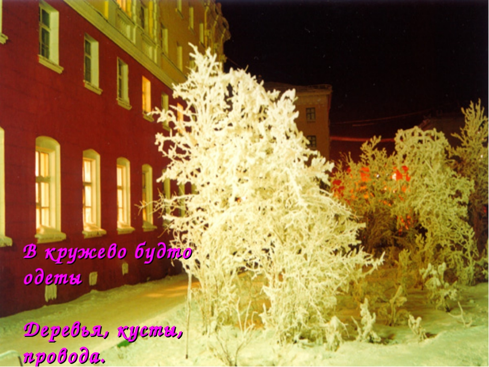 В кружево будто одеты Деревья, кусты, провода. И кажется сказкою это, А в сущ...