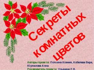 Секреты комнатных цветов Авторы проекта: Поткина Ксения, Кобелева Вера, Юрпал