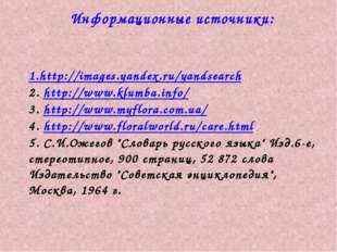 Информационные источники: 1.http://images.yandex.ru/yandsearch 2. http://www.