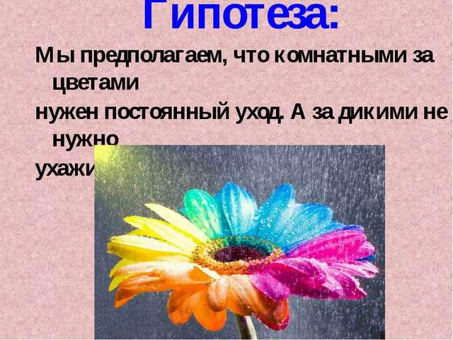 Гипотеза: Мы предполагаем, что комнатными за цветами нужен постоянный уход. А...
