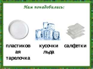 Нам понадобились: пластиковая тарелочка кусочки льда салфетки