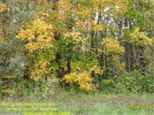 … Осенью..., когда… Лес, словно терем расписной, Лиловый, золотой, багряный,