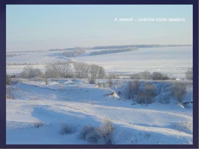 А зимой – снегом поля замело.