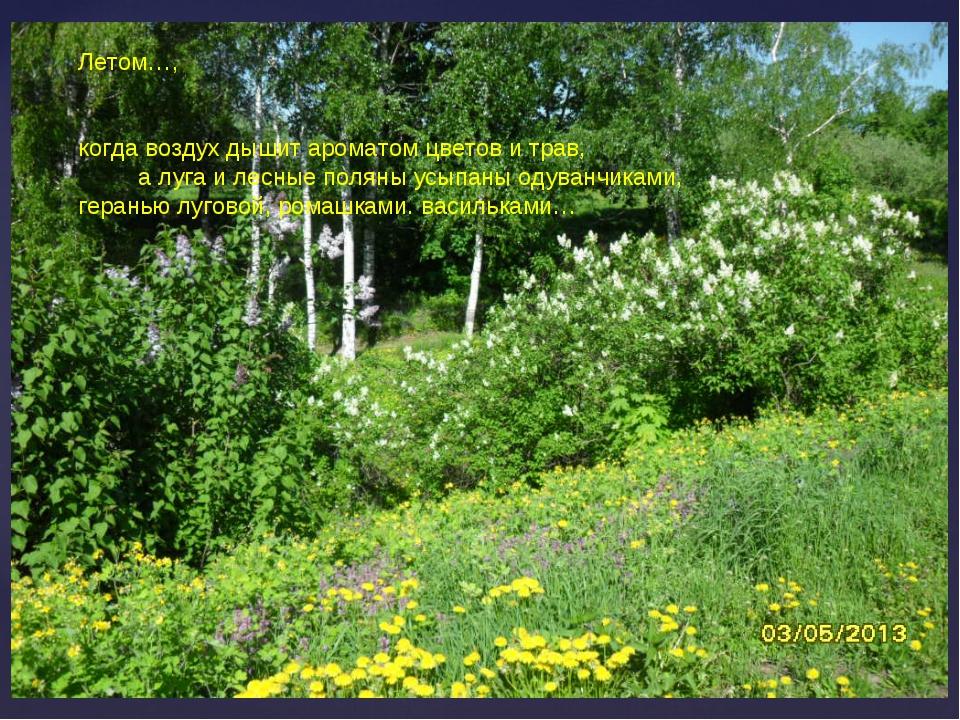 Летом, когда воздух дышит ароматом цветов и трав, а луга, лесные поляны усыпа...