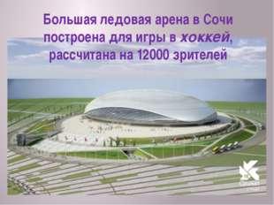 Большая ледовая арена в Сочи построена для игры в хоккей, рассчитана на 12000