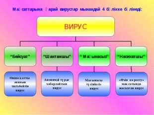 Мақсаттарына қарай вирустар мынандай 4 бөлікке бөлінеді: