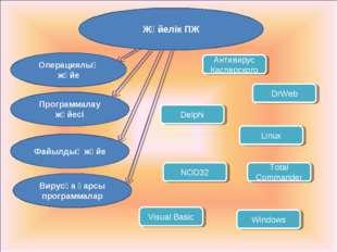 Жүйелік ПЖ Операциялық жүйе Программалау жүйесі Файылдық жүйе Вирусқа қарсы п