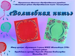 Муниципальное автономное общеобразовательное учреждение «Малиновская средняя