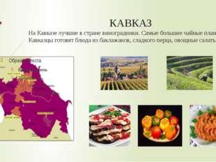 КАВКАЗ На Кавказе лучшие в стране виноградники. Самые большие чайные плантаци