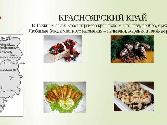 КРАСНОЯРСКИЙ КРАЙ В Таёжных лесах Красноярского края тоже много ягод, грибов,...