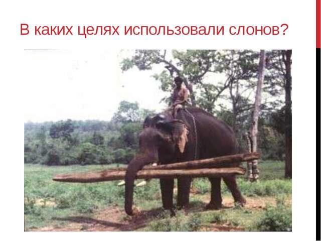 В каких целях использовали слонов?