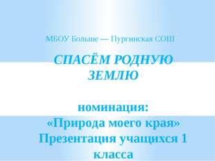 СПАСЁМ РОДНУЮ ЗЕМЛЮ номинация: «Природа моего края» Презентация учащихся 1 к