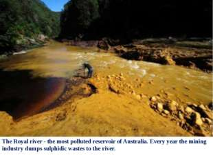 The Royal river - the most polluted reservoir of Australia. Every year the mi