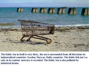 The Baltic Sea in itself is very dirty,, the sea is surrounded from all direc