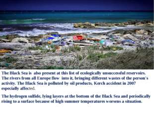 The Black Sea is also present at this list of ecologically unsuccessful reser