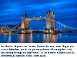 For the last 30 years the London Thames became, according to the nature defen