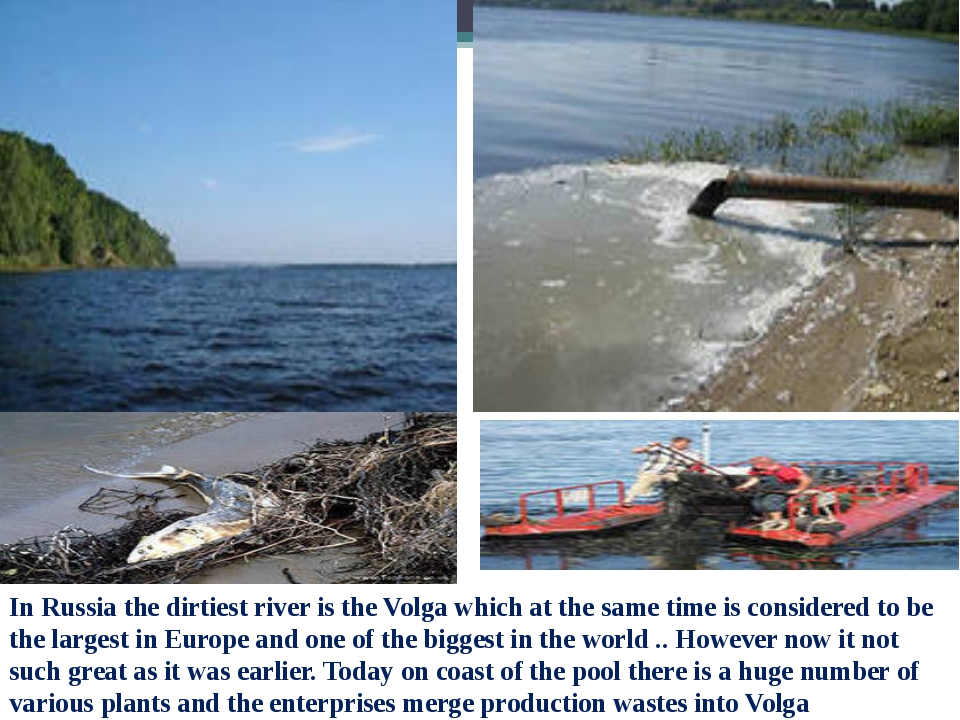 In Russia the dirtiest river is the Volga which at the same time is considere...