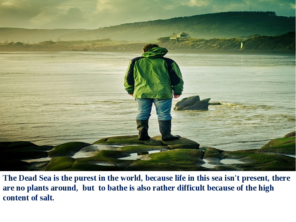 The Dead Sea is the purest in the world, because life in this sea isn't prese...